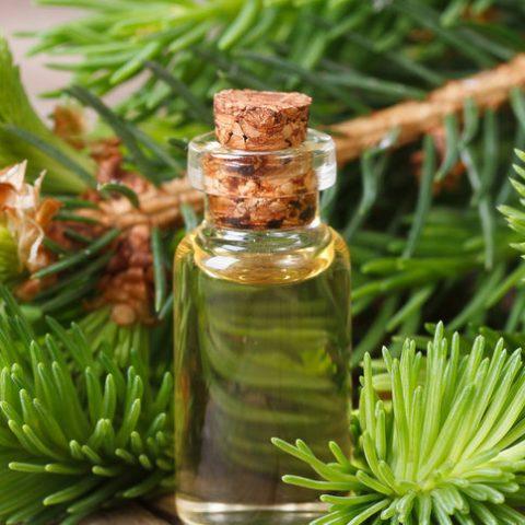 Co w mojej kosmetyczce robi olejek pichtowy? Poznajcie jego właściwości i zastosowanie
